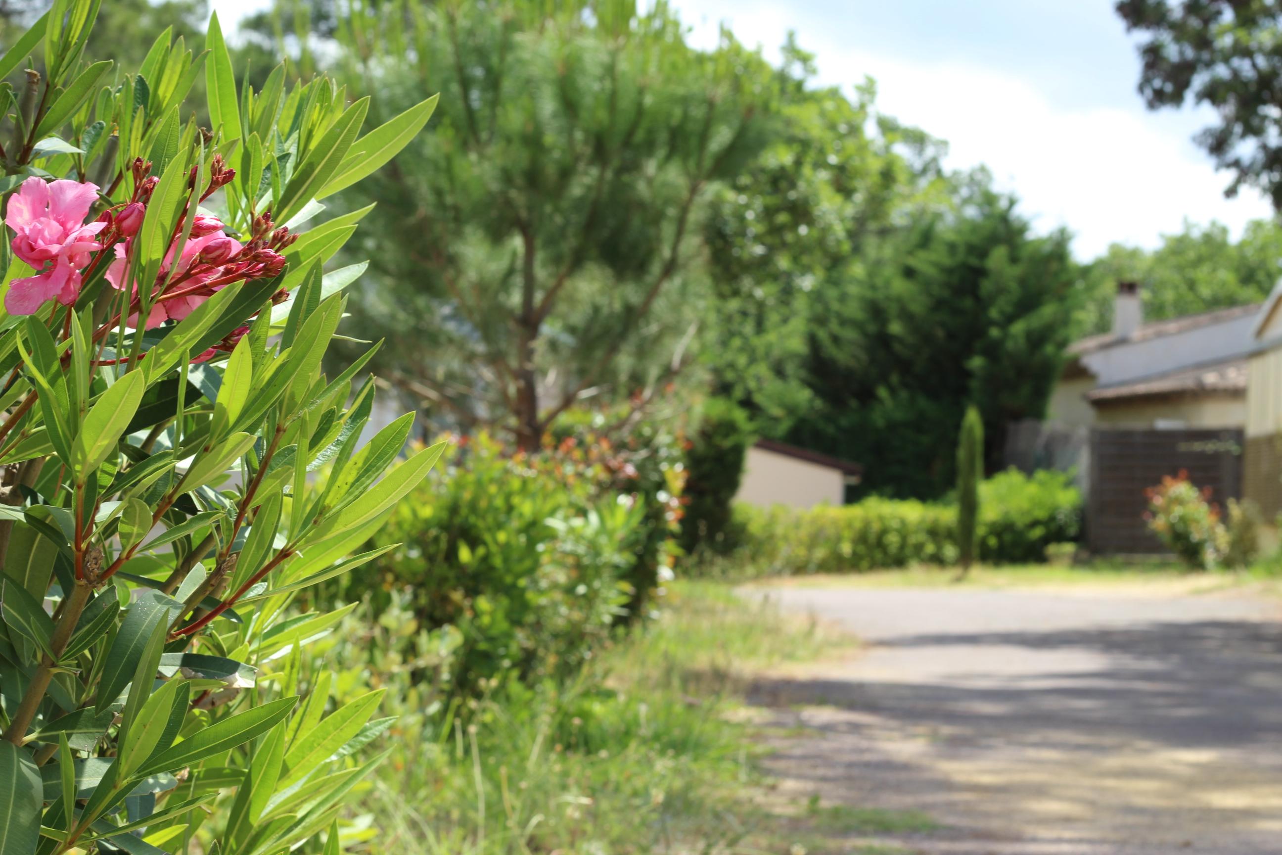 Familienurlaub in Südfrankreich - eine unfassbare Auszeit für die ganze Familie
