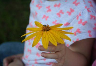 Geschenkidee für Kleinkinder und größere Kinder als Kleinigkeit oder einfach so, weil es schön ist die Kinder zu Fördern