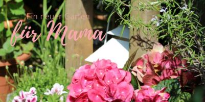 Garten Deko für einen schönen Karten für wenig Geld