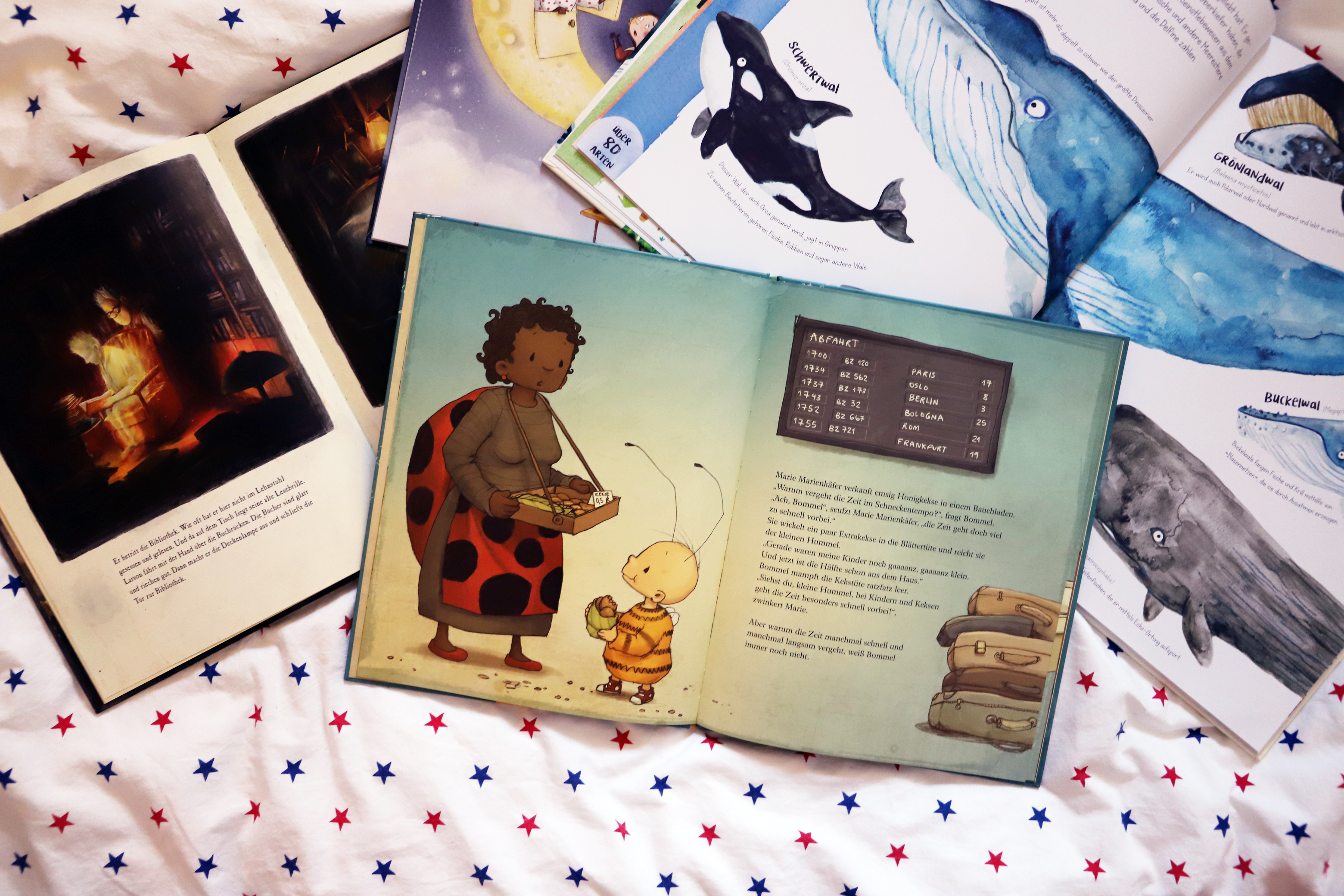 Kinderbuch ab 4 die kleine Hummel Bommel